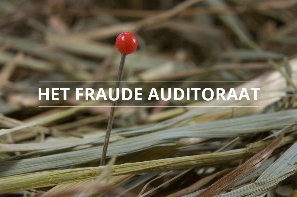 fraude-auditoraat